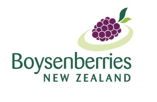 Boysenberries New Zealand
