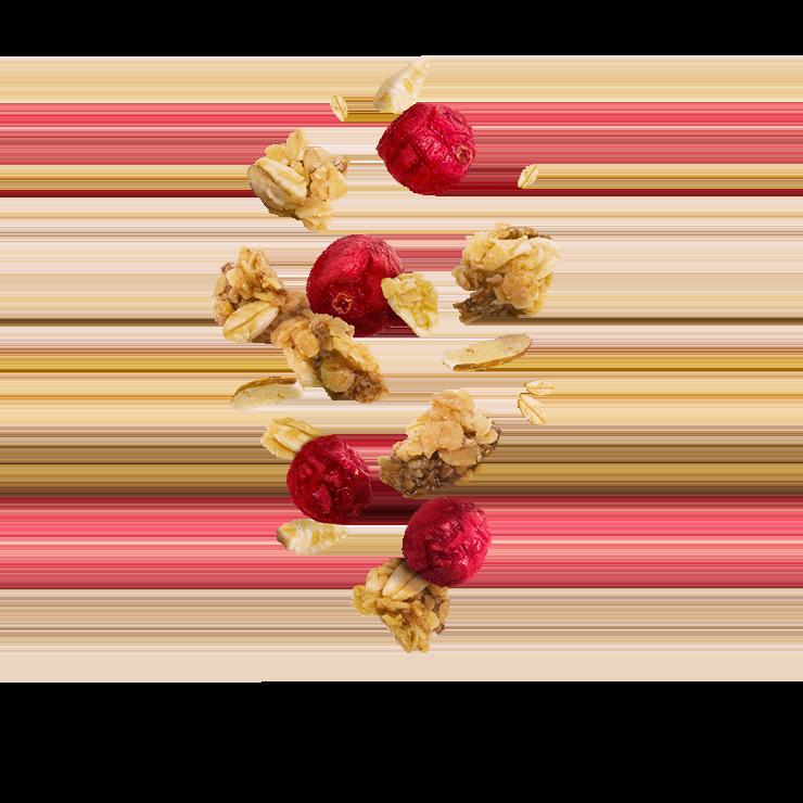 Fruchtige Cerealien mit Crunchy Cranberrys™