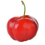 Acerolapüree von Niagro