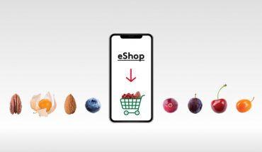 B2B Online Shop | 24/7 – fruit & nuts