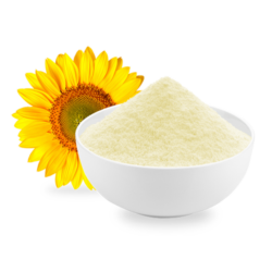 Dairy Concentrate