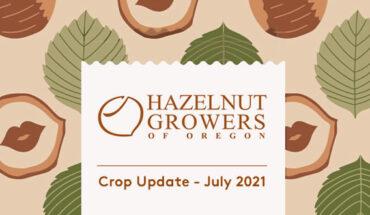 Aktuelles zur Haselnussernte in Oregon – Juli 2021